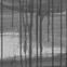 Aristokrāts. 2012. Audekls, akrils, eļļa. 200x150 cm