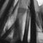 Ikdienišķā vīrišķība. 2012. Audekls, akrils, eļļa. 73 x 92cm